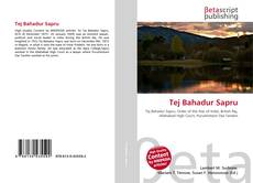 Bookcover of Tej Bahadur Sapru