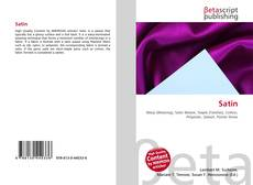 Bookcover of Satin