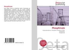 Bookcover of Phosphinate