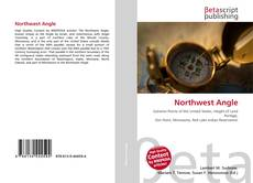 Bookcover of Northwest Angle