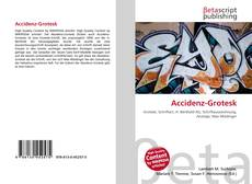 Bookcover of Accidenz-Grotesk