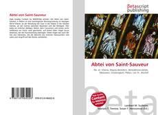 Capa do livro de Abtei von Saint-Sauveur