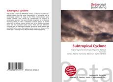 Bookcover of Subtropical Cyclone