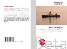 Bookcover of Punjab region