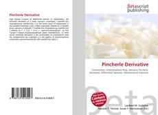 Bookcover of Pincherle Derivative