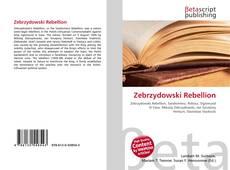 Обложка Zebrzydowski Rebellion
