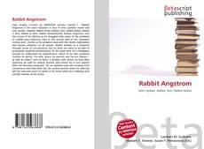 Couverture de Rabbit Angstrom