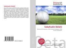 Portada del libro de Sabahudin Delalić