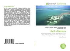 Couverture de Gulf of Mexico