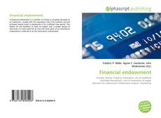 Copertina di Financial endowment