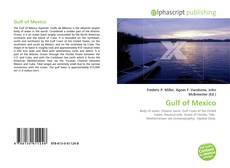 Gulf of Mexico的封面