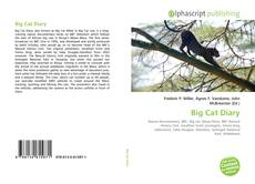 Bookcover of Big Cat Diary