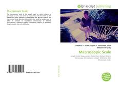 Bookcover of Macroscopic Scale