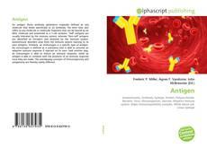 Buchcover von Antigen