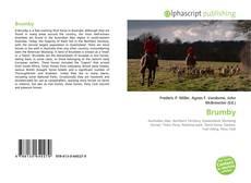 Brumby kitap kapağı