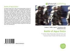 Bookcover of Battle of Agua Dulce