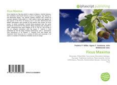 Borítókép a  Ficus Maxima - hoz