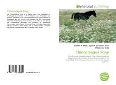 Capa do livro de Chincoteague Pony