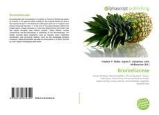 Borítókép a  Bromeliaceae - hoz