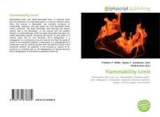 Copertina di Flammability Limit