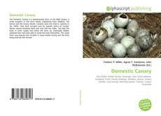 Copertina di Domestic Canary