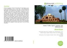 Bookcover of Amritsar