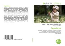 Bookcover of Experience