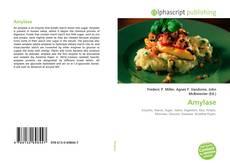 Buchcover von Amylase