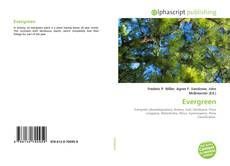 Bookcover of Evergreen