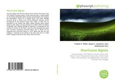 Bookcover of Hurricane Agnes