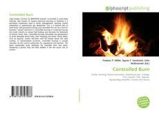 Couverture de Controlled Burn