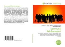 Couverture de Communal Reinforcement