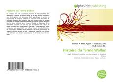 Bookcover of Histoire du Terme Wallon