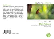 Обложка Black Redstart