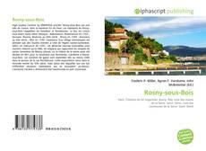 Borítókép a  Rosny-sous-Bois - hoz