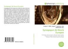 Capa do livro de Synagogue de Doura Europos