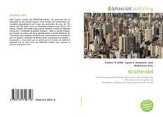 Capa do livro de Gratte-ciel