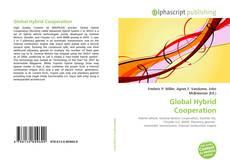 Global Hybrid Cooperation的封面