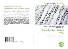 Borítókép a  Beautiful Boy (Darling Boy) - hoz