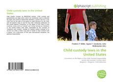 Child custody laws in the United States kitap kapağı