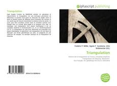 Bookcover of Triangulation