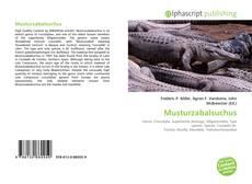 Bookcover of Musturzabalsuchus