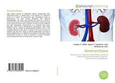 Bookcover of Amenorrhoea