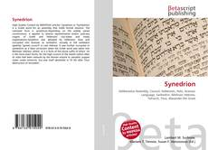 Bookcover of Synedrion