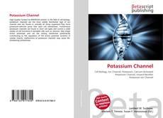 Borítókép a  Potassium Channel - hoz