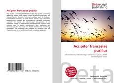 Accipiter francesiae pusillus的封面
