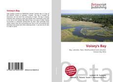 Buchcover von Voisey's Bay