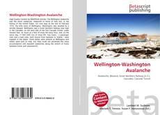 Bookcover of Wellington-Washington Avalanche