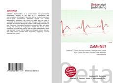 Bookcover of ZaMirNET