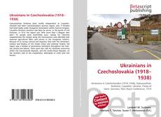 Bookcover of Ukrainians in Czechoslovakia (1918–1938)